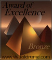 Visual Xtreme's Bronze award